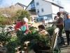landfrauen-beim-binden-des-osterbaumes-mittel